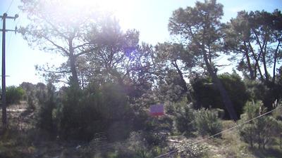 Jaureguiberry - 2 Terrenos En Un Padrón (1.125 Mts )