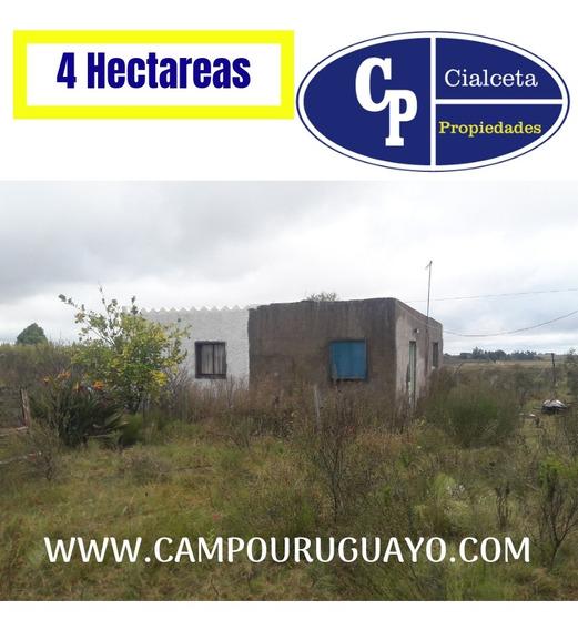 Chacra De 4 Hectáreas Con Construcción, Un Regalo, Veala