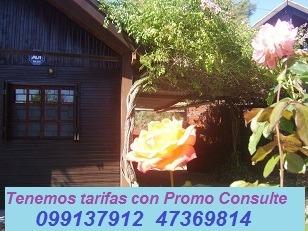 Alquiler Bungalows Www.cabanasloscharruas.com Termas Dayman