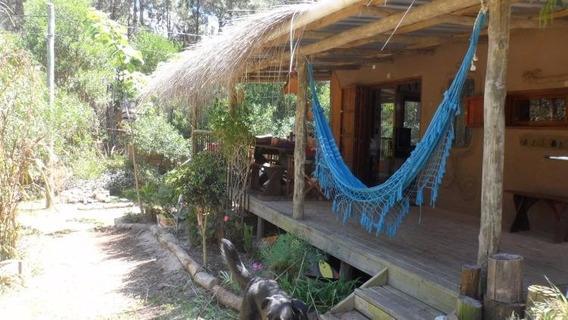 Casa En La Paloma ,alquiler Anual