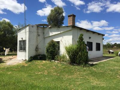 Quinta Con Casa Muy Cómoda. Buena Tierra Para Cultivo