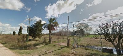 Vende - Chacra De 7 Hectáreas En San Lucia - Financiación