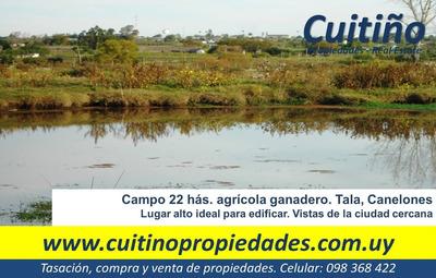 Campo 22 Has. Agricola Ganadero Tala Canelones