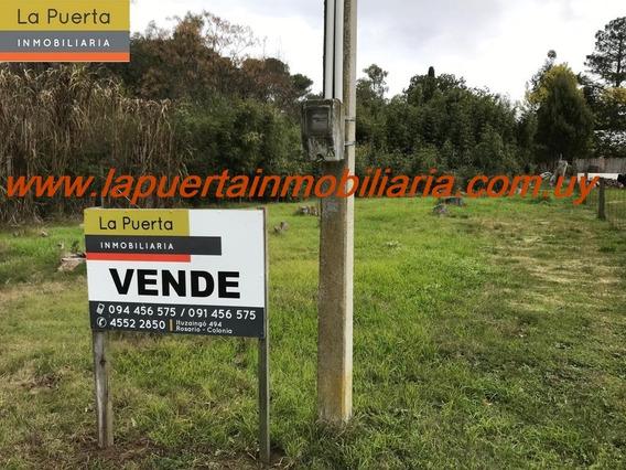 Venta De Terreno En Blancarena.
