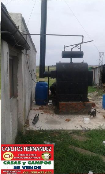Tambo Queseria Fabrica Campo P Arrendar 6 Ha Ecilda San Jose