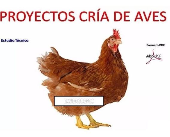 Paquete Aprende Cria Gallinas Pollos Pavos Codorniz Patos !!