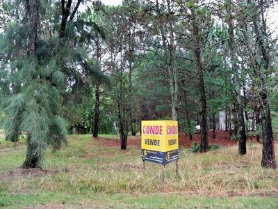 Terreno En Balneario Zagarzazu En Buena Ubicación