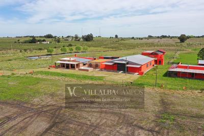 Excelente Campo, Con Muy Buenas Instalaciones A 40 Kmt Mdeo