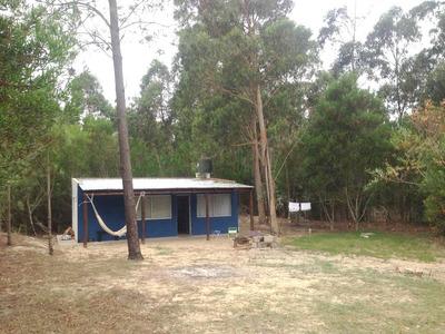 Casa Muy Acogedora En El Bosque