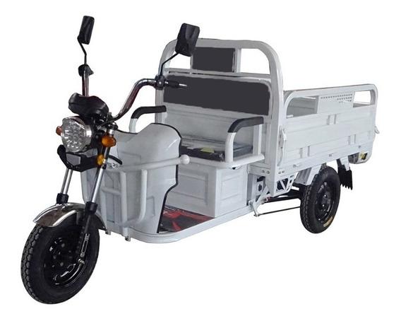 Triciclo Electrico Cargo Tr1 Ecolo