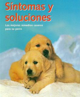 Remedio Para Alergia De Perros En Mercado Libre Uruguay
