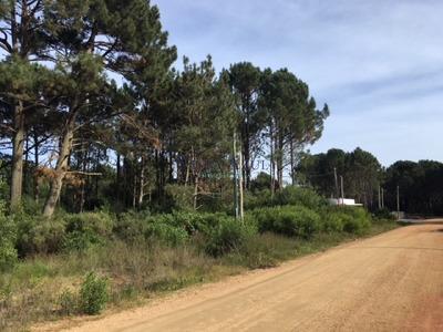 Terrenos Financiados En Parque Burnett - Ref: 5600