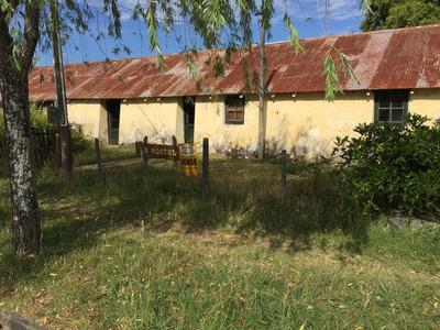 Casa Céntrica En Conchillas. Ref: 5.099