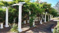 Alquilo Cómodo Monoambiente Con Espectacular Jardín