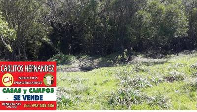 Campo Forestal Turístico Rio 30 Ha Cerca D San Jose Us 1.900