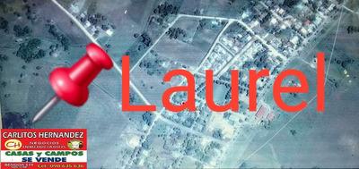 Zona Laurel - San Jose Tenemos Propiedades P Venta Alquiler