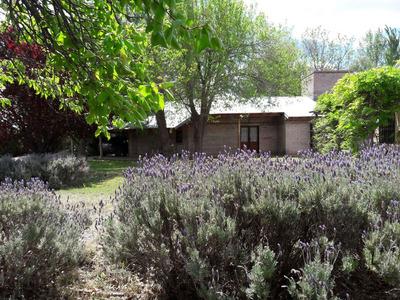 Chacra De 7,8 Ha Con Importante Casa, San Rafael, Mendoza