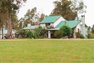 Chacra De 14.800 Ha, Piscina, Tajamar