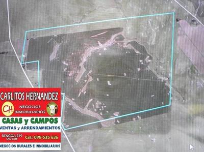 Campo 154 Ha Agricola Ganadero P Venta Us 3.900 Ha Pos Finan