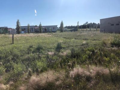 Terreno En Colonia Del Sacramento