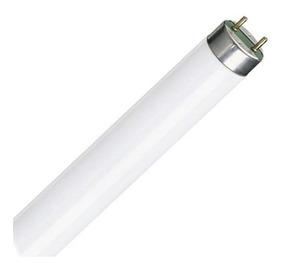 Tubo Fluorescente Estándar T8 36w, Luz Día - Philips L24436