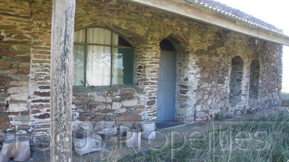 Chacra De 10 Hectareas Con Casa De 2 Dormitorios, 2 Baños.