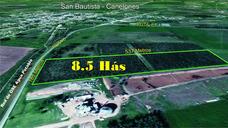 Campo Terreno Monte Chacra Industrial O Comercial