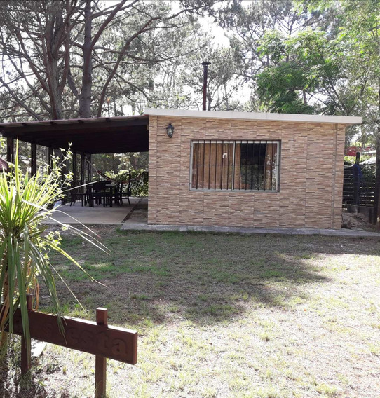 Alquiler De Casa En Cuchilla Alta
