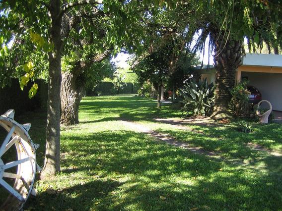 Oportunidad! Casa Termas Del Dayman 4dorm-3 Baños U$s 325mil