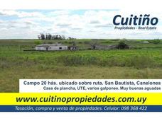 Campo 20 Has Casa Plancha Galpones Ute