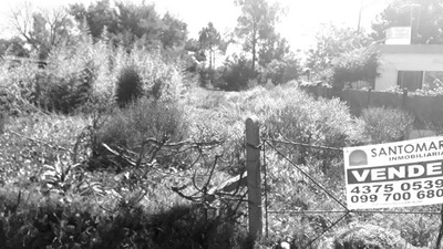 Vendo Terreno Sobre Ruta Interbalnearia