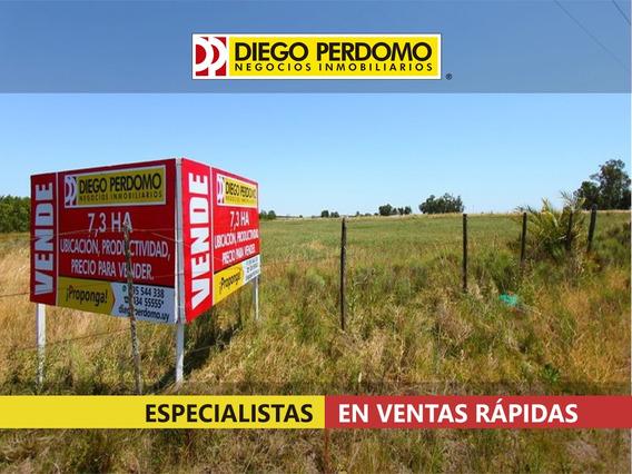 Chacra En Venta, 7.3 Has, Localidad De Libertad