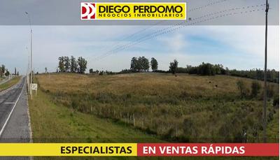 Chacra En Venta, 12.4 Has, Colonia Sur