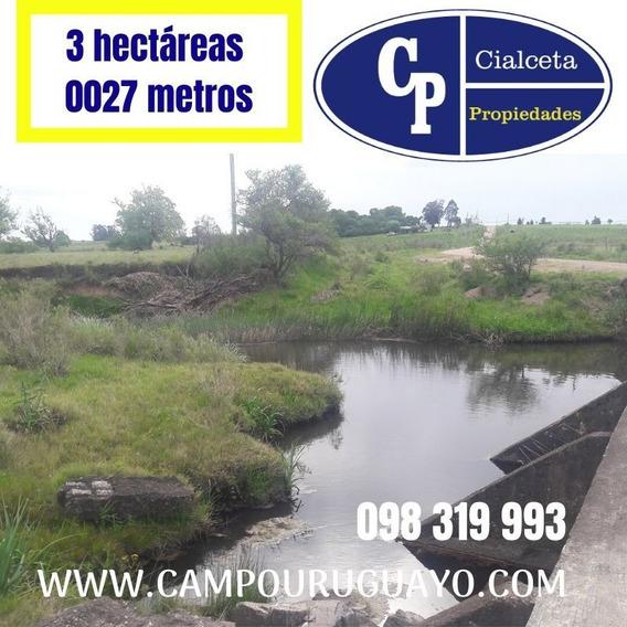Chacra De 3 Hectáreas Con Cañada