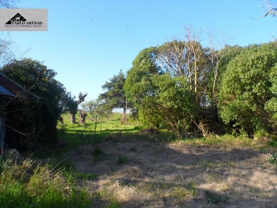 Campo - Chacra En Venta - Colonia Valdense - Colonia #83