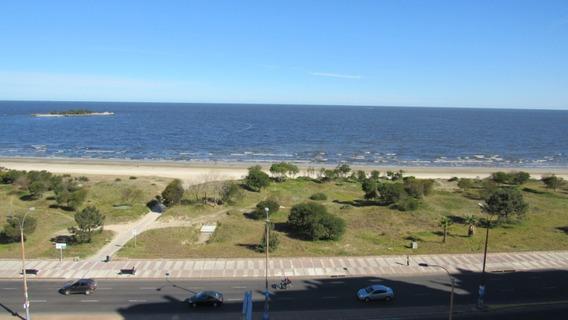 Hermoso Apartamento Frente A La Playa Malvín