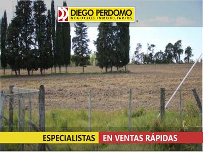 Campo En Venta,13,4 Hás, Próximas A Ruta 1