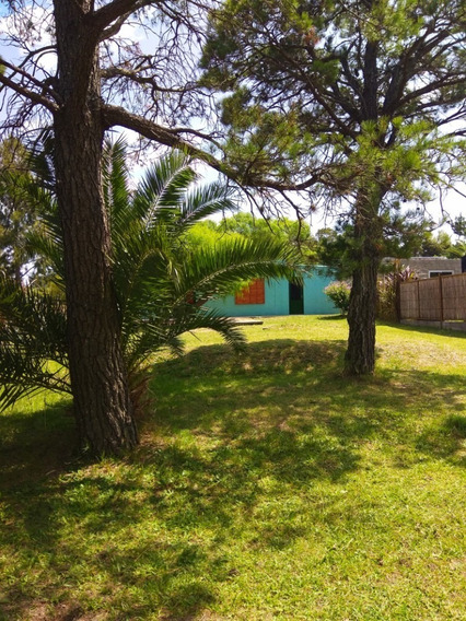 Vendo Casa En Balneario Britópolis Con Terreno Arbolado