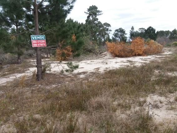 Terreno En San Luis Al Sur.