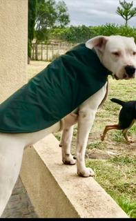 Capa Impermeable Y Doble Polar Para Perros Grandes!
