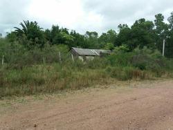 Terreno En Venta En Cerro Chato