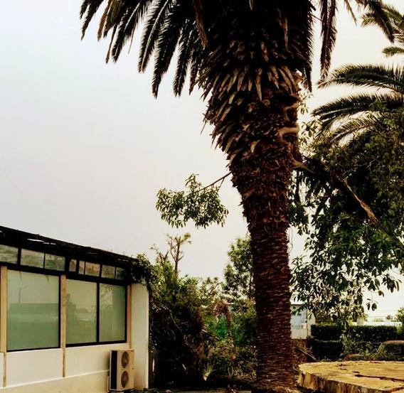 Alquilo: San Carlos. Vivienda/local: Loft Minimalista