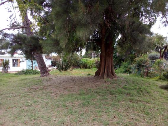 Terreno En Barrio Parque- La Paloma 480m2