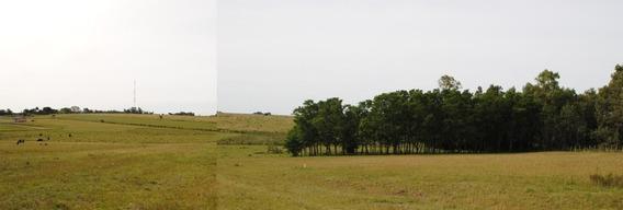 Hermoso Terreno De 1300 M2 Con Linda Vista