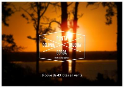 43 Lotes En Balneario Punta Gorda, Ideal Inversión