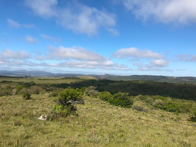 Chacra Completa: Vistas, Campo, Piedra, Monte Y Agua.