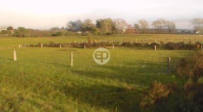 Land - Peñarol Lavalleja