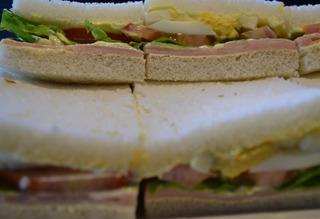 100 Sandwiches Surtidos