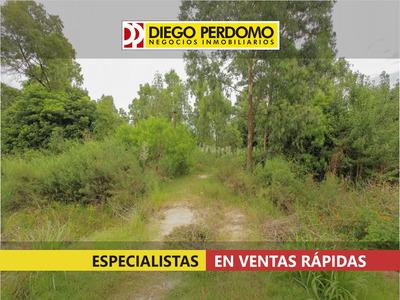 Predio De 10.991 M² En Venta, Ciudad Del Plata