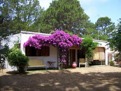 Casa Para 4 Personas En Calle 9 Y Montevideo.